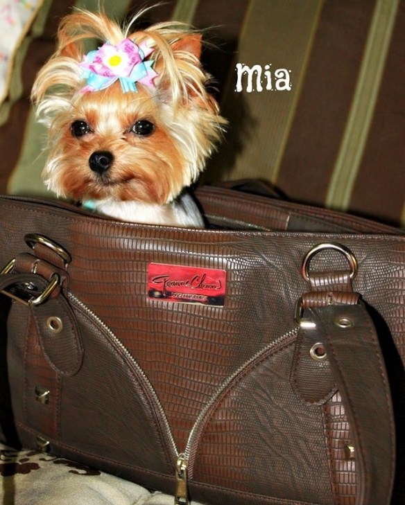 Bond Girl Smuggler Purse with Mia Yorkshire Terrier